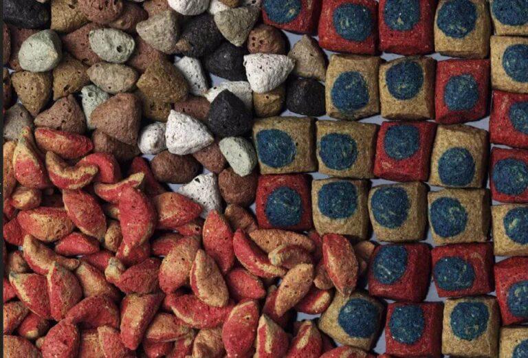 Ekstruzja żywności, pasz, co warto wiedzieć?